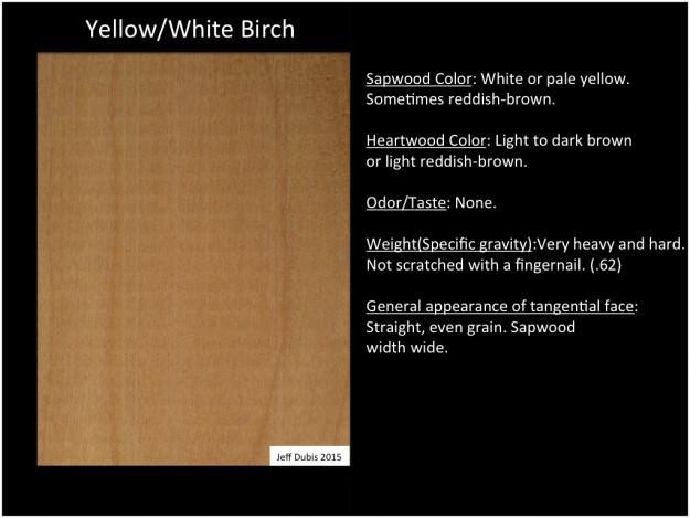 birch_tan