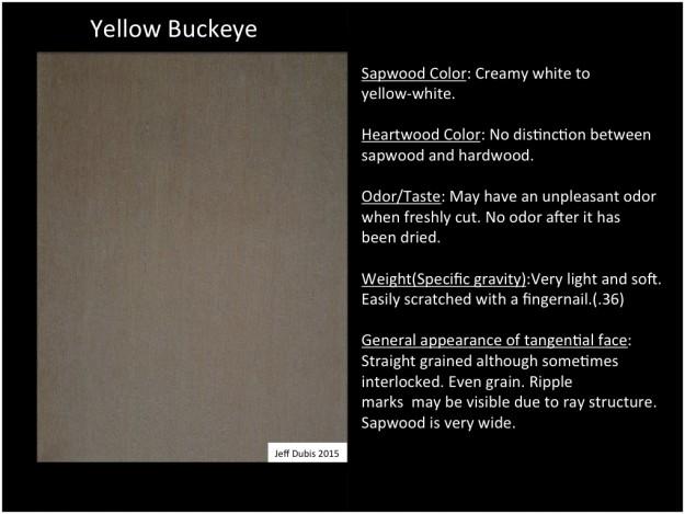 buckeye_tan