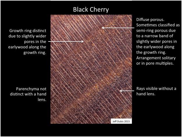 cherry_cs
