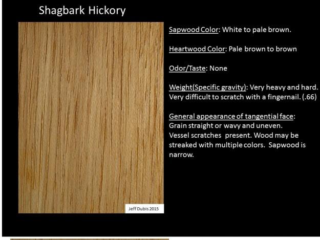 hickory_tan