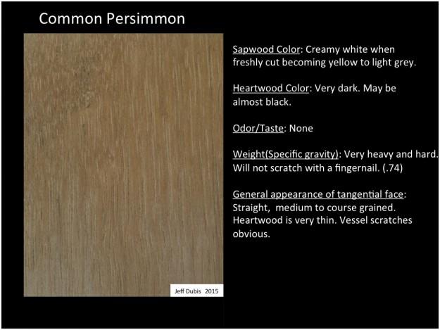 persimmon_tan