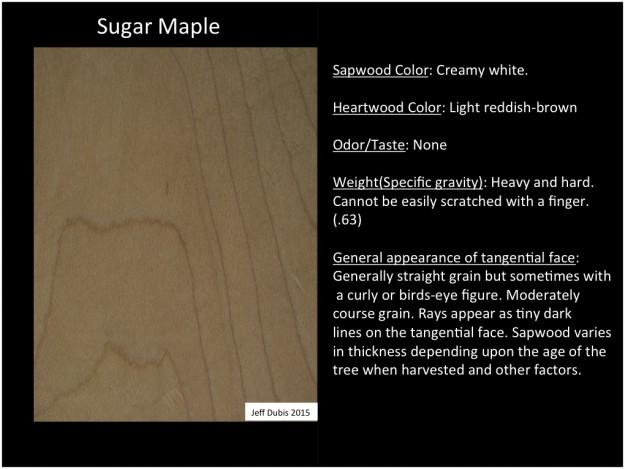 sugarmaple_tan