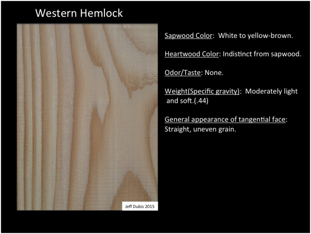 westernhemlock_tan