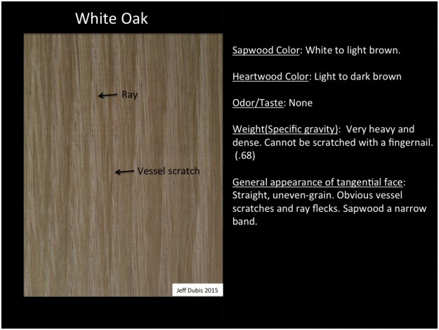 whiteoak_tan